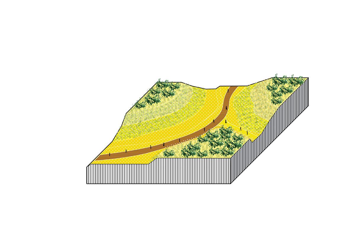 felixx-fier-dunes3.jpg