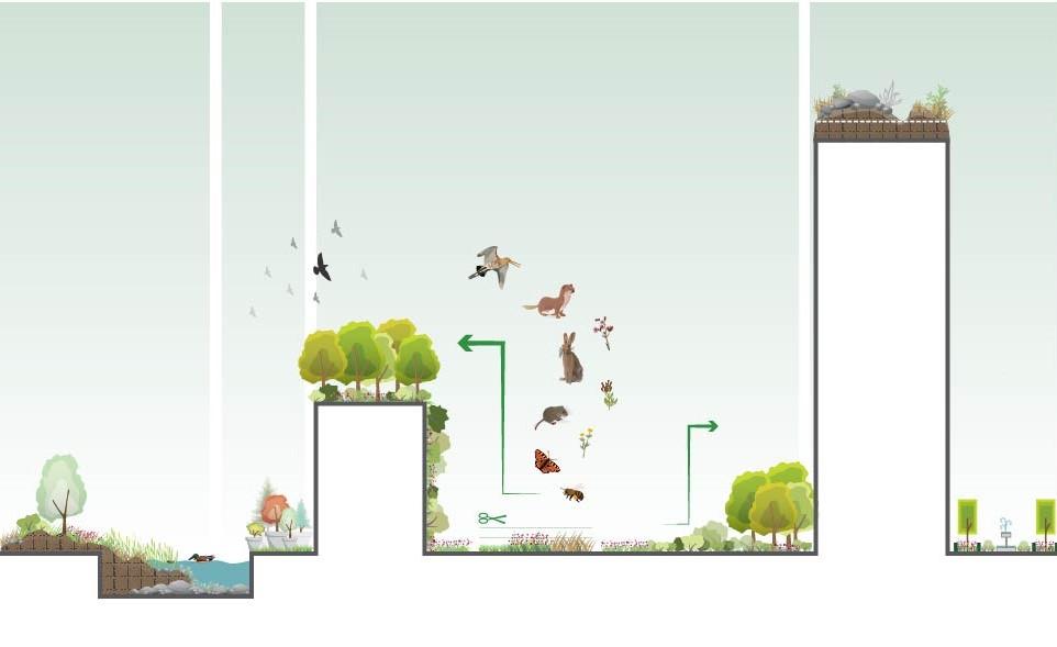 felixx-greenicons-biodiversity.jpg