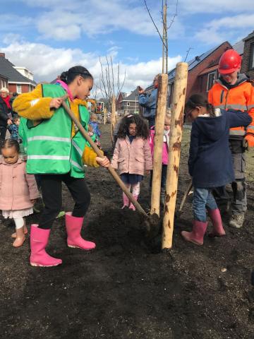 Tree planting event in Rijnvliet Zuid!